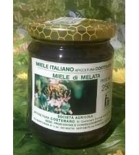 意大利天然蜜露蜂蜜  250g.